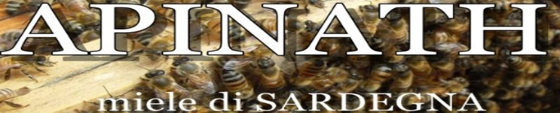 APINATH HONEY - local producer and seller of Sardinian honey