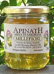 sardinia's WILDFLOWER apinath